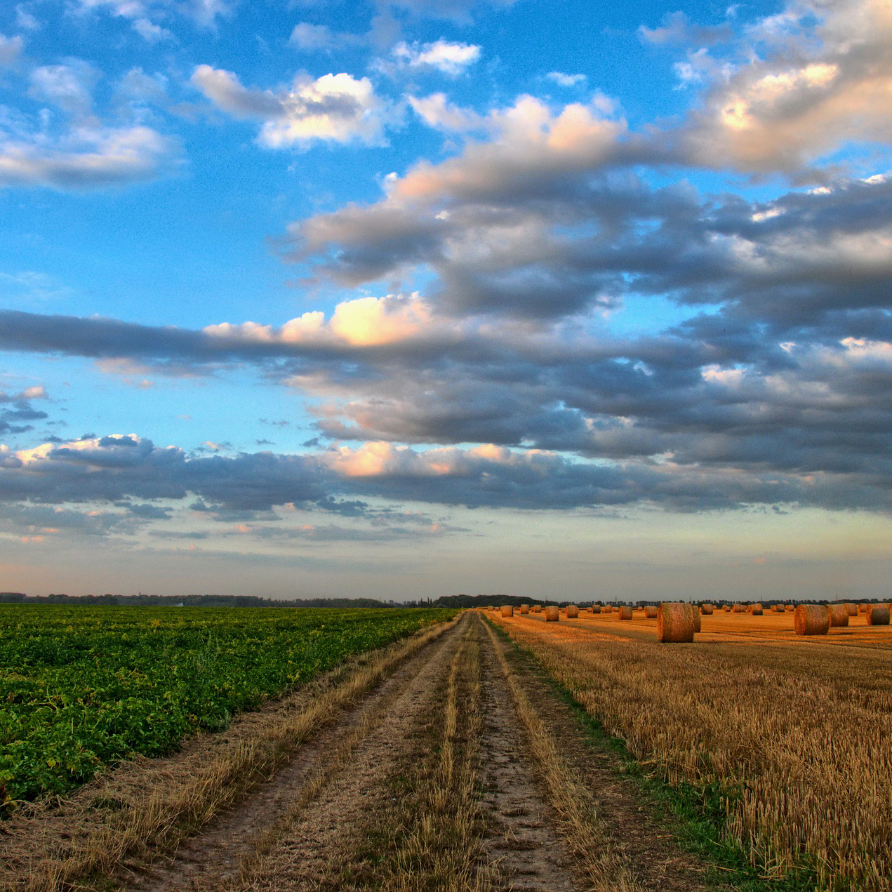 Challenges with Healthcare in the Rural and Prairie Environment